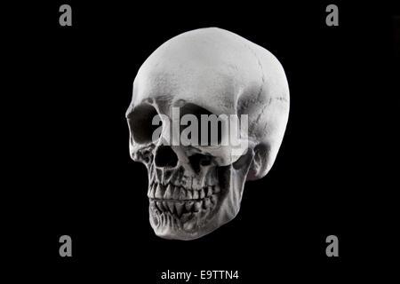 Une décoration crâne Halloween isolé sur un fond noir