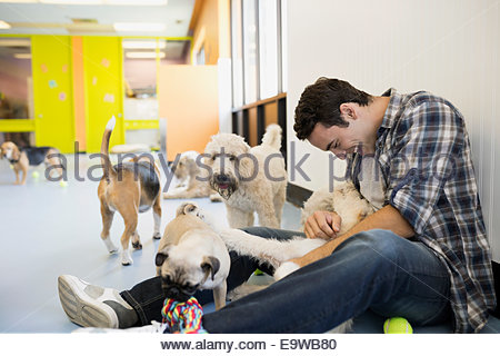 Homme jouant avec des chiens de garde de chien à Banque D'Images