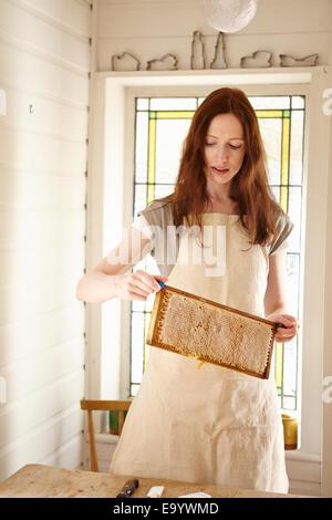 Femme apiculteur de cuisine holding up 'super' à partir de la ruche d'abeilles (bac) Banque D'Images