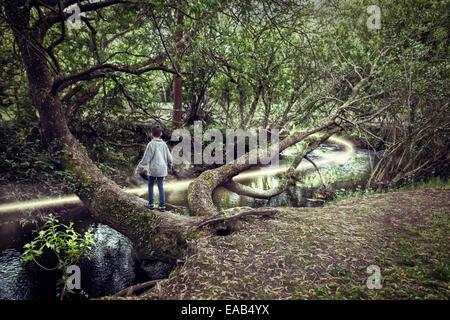 Garçon sur arbre de plus de rivière avec chemin de lumière Banque D'Images