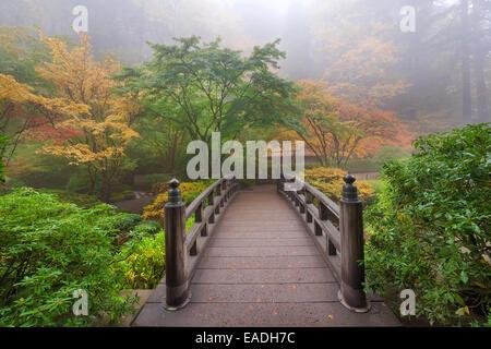 Pont de la lune un matin brumeux en automne au jardin japonais de Portland Banque D'Images