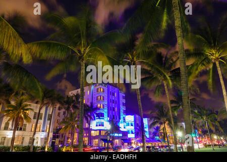 Floride Miami Beach Art Deco District Ocean Drive crépuscule soir nuit palmiers l'hôtel Park Central building nightlife Banque D'Images