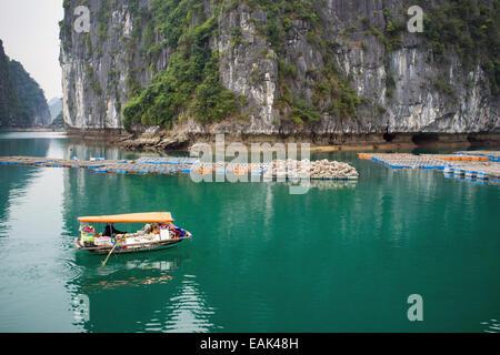 Matin vues de la Baie d'Ha Long Vietnam Banque D'Images