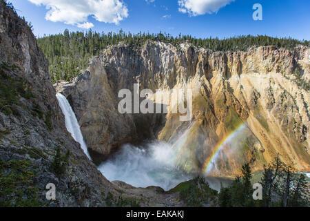 Double arc-en-ciel sur la tombe inférieure de la rivière Yellowstone vu de Uncle Tom's Trail à Parc National de Banque D'Images