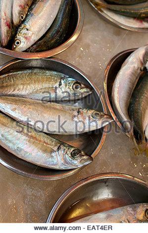 Les poissons en vente sur un marché de rue dans le quartier central. Banque D'Images