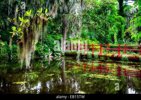 Voir d'un peu rouge Passerelle sur un étang, Magnolia Plantation, Charleston, Caroline du Sud Banque D'Images