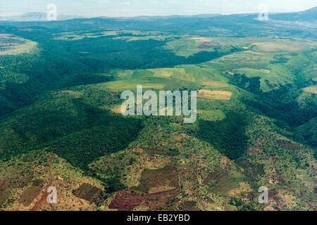 Les champs agricoles en terrasses sur les pentes de la montagne effacée de forêt tropicale. Banque D'Images