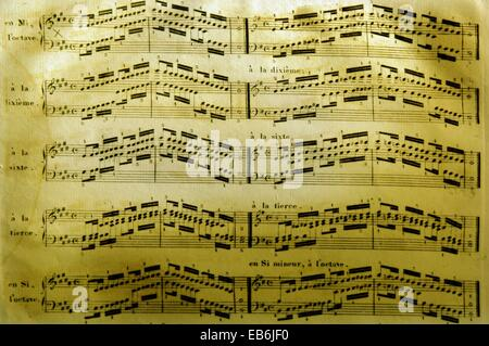 Musique, octave Banque D'Images