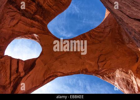 Arche de toile d'araignée Banque D'Images