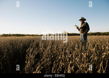 Senior male farmer using digital tablet in champ de soya, Plattsburg, New York, USA Banque D'Images
