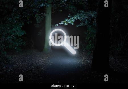 Forêt la nuit, avec symbole recherche lumineux Banque D'Images