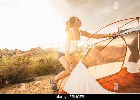 Femme mise en place tente, Joshua Tree National Park, Californie, États-Unis Banque D'Images