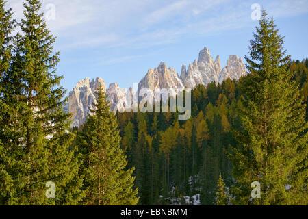 La dolomite sommet du groupe Croda da Lago, Italie, Tyrol du Sud, Dolomiten Banque D'Images