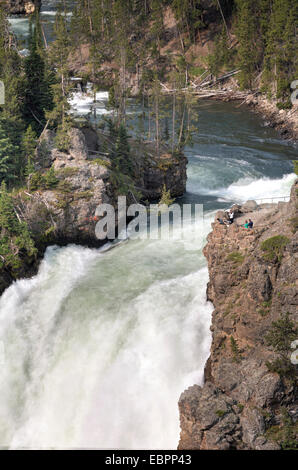 Upper Falls, rivière Yellowstone, le Parc National de Yellowstone, UNESCO World Heritage Site, Wyoming, United States Banque D'Images