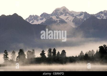 Vue panoramique du lac Matheson avec brume du matin au Mont Tasman (3498 m), Nouvelle-Zélande, Sud de l'Île, Westland Banque D'Images