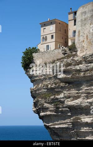 Maisons sur rocher, France, Corse, Bonifacio Banque D'Images