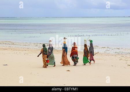 Des femmes portant des seaux remplis de sable, Tanzanie, Sansibar Banque D'Images