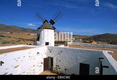 Moulin dans le musée Centro de Interpretacion de los Molinos, Canaries, Fuerteventura, Tiscamanita Banque D'Images