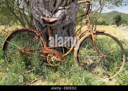 Vélo rouillé oublié sur un pré, l'Espagne, Baléares, Ibiza Banque D'Images