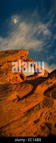 Une fine art grand format de fichier vue panoramique vertical de Arch Rock à la vallée de feu Sate Park près de Banque D'Images