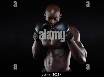 Portrait de tough gloves posing in boxing position contre l'arrière-plan noir. Chasseur professionnel prêt pour Banque D'Images
