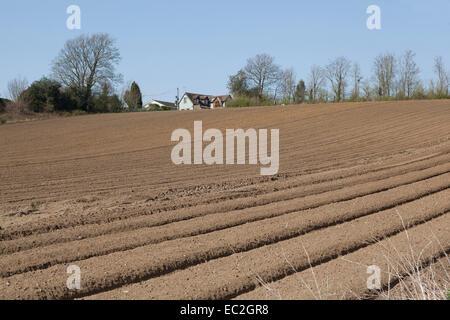Nouveau champ labouré avec cottage Banque D'Images