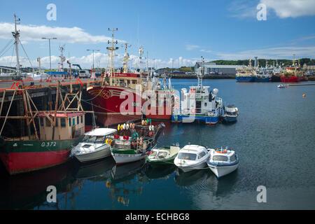Les bateaux de pêche et chalutiers amarrés au port de Killybegs, comté de Donegal, Irlande. Banque D'Images