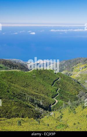 Le Portugal, l'île de Madère, Paul da Serra plateau dans le centre de l'île Banque D'Images
