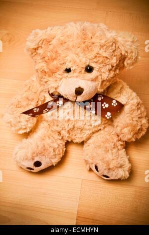 Ours en peluche jouet Banque D'Images