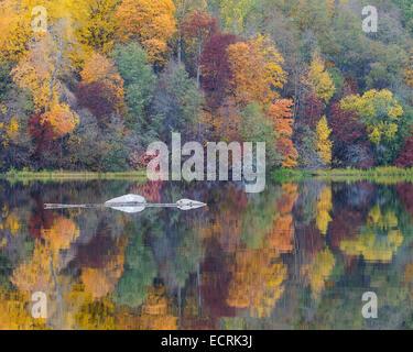 Les roches et une forêt d'automne reflètent dans une rivière. Banque D'Images