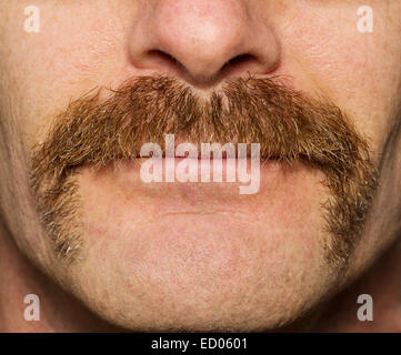 Close up of mans face avec un mois d'ancienneté moustache movember Banque D'Images