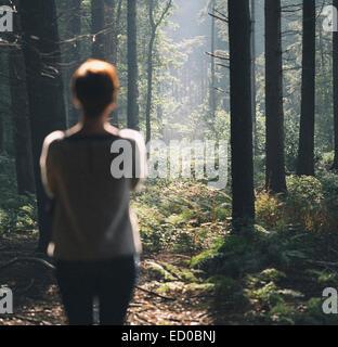 Vue arrière de la femme regardant fixement dans la forêt Banque D'Images