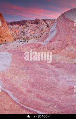 Grès colorés, Vallée de Feu, près de Las Vegas, Nevada. Banque D'Images