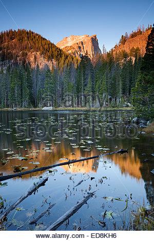 Sunrise Alpenglow sur Hallett Peak au lac nymphe, Rocky Mountain National Park, Colorado Banque D'Images