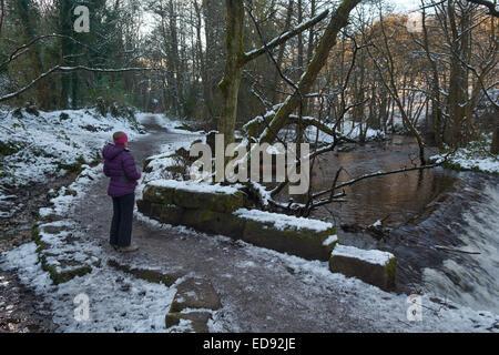 Neige sur la vallée Rivelin Walkway - Sheffield, England, UK Banque D'Images