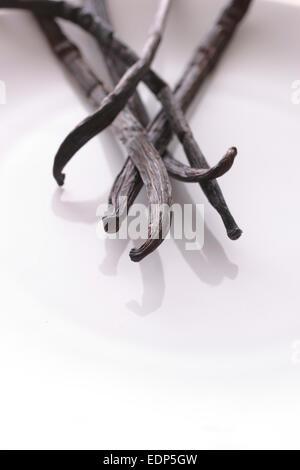 Un gros plan de gousses de vanille sur une plaque blanche avec une faible profondeur de champ Banque D'Images