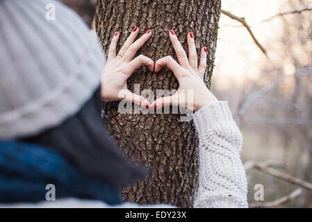 Mains de prendre une forme de coeur sur un tronc d'arbre Banque D'Images