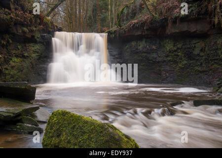 L'eau du ruisseau coule sur Scenic Goit Stock Cascade, entourée d'arbres, dans un endroit calme, isolé, - Cullingworth, Banque D'Images