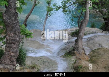 Ruisseau de montagne est situé dans la forêt. C'est le Kursunlu Cascade Nature Park (à 19 km de Antalya, Turquie). Banque D'Images