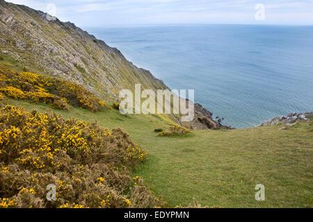 Royaume-uni, Pays de Galles, Swansea, Gower, Southgate, West Cliff