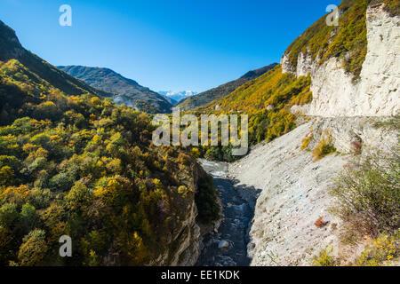 Route menant à travers une belle sur la gorge de la rivière Argoun dans les montagnes de Tchétchénie, le Caucase, Banque D'Images