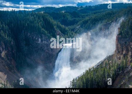 L'Upper Falls dans le Grand Canyon de Yellowstone dans le Parc National de Yellowstone, UNESCO World Heritage Site, Banque D'Images