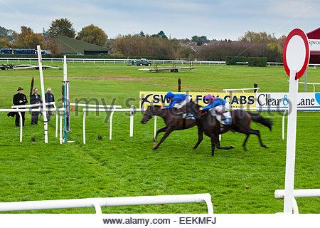 Finition serré comme deux chevaux et jockeys approche la ligne d'arrivée à l'hippodrome de Leicester. 27 Octobre 2014