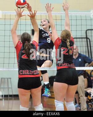 Cheshire, CT USA Staples's Lauren Mushro met le pic de plus de Cheshire au cours de la CIAC LL Championship match Banque D'Images