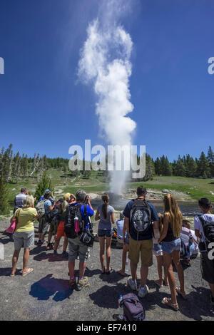 Les touristes regardant l'éruption du geyser de Riverside, le parc national de Yellowstone, Wyoming, united states