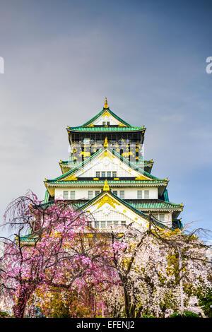 Osaka, Japon au château d'Osaka au printemps. Banque D'Images