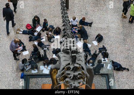 Les enfants de l'école de visiter le musée d'Histoire Naturelle de Londres Angleterre Royaume-Uni UK Banque D'Images