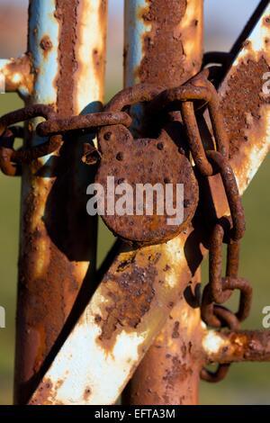 Chaîne rouillée et d'un cadenas sur une porte de Banque D'Images