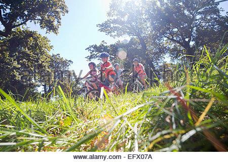 Faible niveau portrait de famille, randonnée cycliste, dans domaine arboré Banque D'Images
