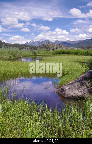Les étangs à Slough Creek, Parc National de Yellowstone, Wyoming, United States.
